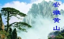 安徽黄山(市分会群编号34991,QQ群