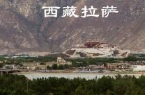 西藏拉萨(分会群编号:54999,QQ群