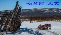 黑龙江七台河 人文(分会群编号:2399