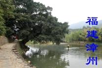 福建漳州(分会群编号:35993,QQ群