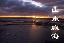 山东威海(分会群编号:37987,QQ群
