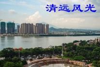 广东清远(分会群编号:44983,QQ群