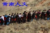 青海黄南 人文(市分会群编号:63996