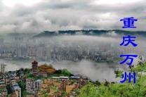 重庆万州(分会群编号:50998,QQ群