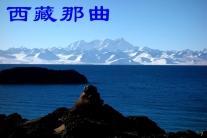 西藏那曲(分会群编号:54998,QQ群
