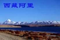 西藏阿里(分会群编号:54994,QQ群