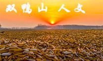 黑龙江双鸭山 人文(市分会群编号:239