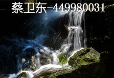 蔡卫东(449980031)