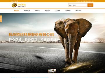 杭州持正科技股份有限公司官方网站