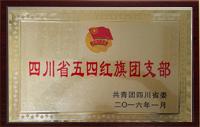 省级荣誉:五四红旗团支部