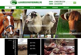 中国马肉网