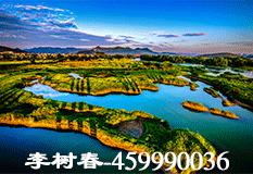 李树春(459990036)
