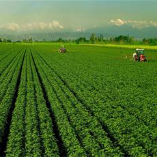 苏州农业中压紫外线消毒器工程