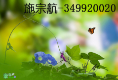 施宗航(340020020)