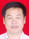 湖南邵阳分会43991-雪松(43999