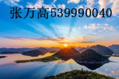 张万高(539990040)