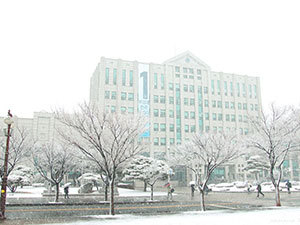 釜庆大学雪景与樱花