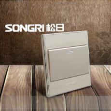 上海松日电器