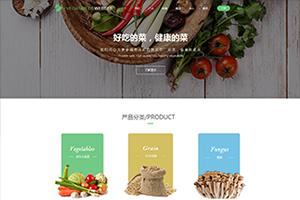 餐饮娱乐婚庆生活服务类网页设计