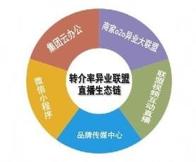 立体化生态链运营模式