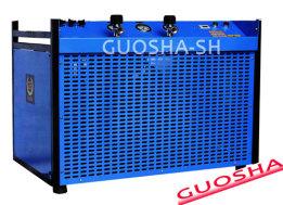 GSW300