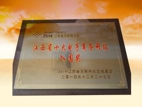 江西省十大电子商务网站入围奖