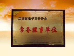 江西省电子商务协会常务理事单位
