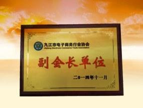 九江电子商务行业协会副会长单位