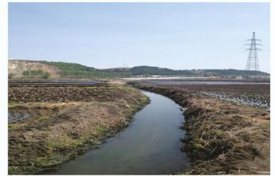 田间引水渠