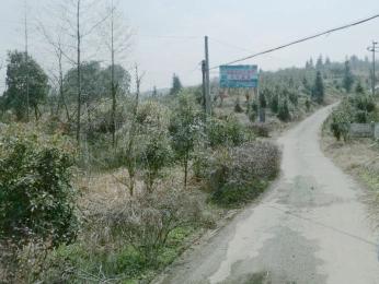 绿园种养殖基地实景