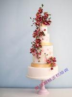 翻糖蛋糕 (28)