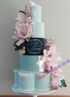 翻糖蛋糕 (37)