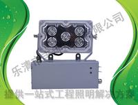 CFS0269YJ应急LED顶灯