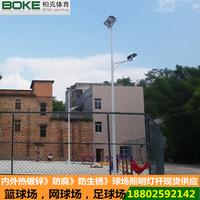 8米上下排灯具灯杆供应 柏克生产照明灯杆