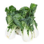 奶白菜 有机奶白菜 福安有机奶白菜 奶白菜500g