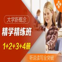 大学·新概念精学精练班 1+2+3+4册