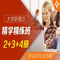 大学·新概念精学精练班 2+3+4册