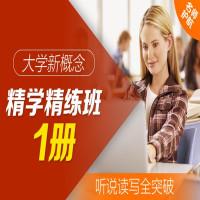 大学·新概念精学精练班 1册