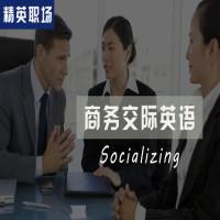 【精英职场】超实用商务交际英语-Socializing