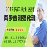 2017临床执业医师同步自测强化班