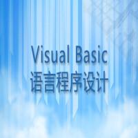 Visual Basic语言程序设计基础学习班