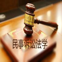 民事诉讼法学全程班