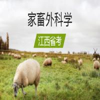 家畜外科学(江西省考)串讲班