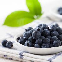 海阳有机蓝莓 8斤