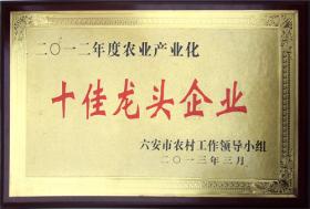 2012年度农业产业化十佳龙头企业