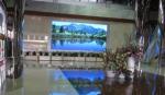唐山市电力局室内P5全彩项目