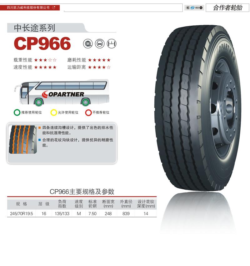 CP966.jpg