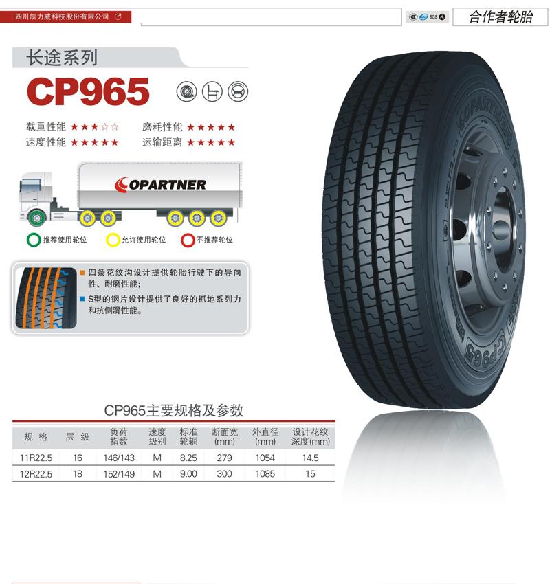 CP965.jpg