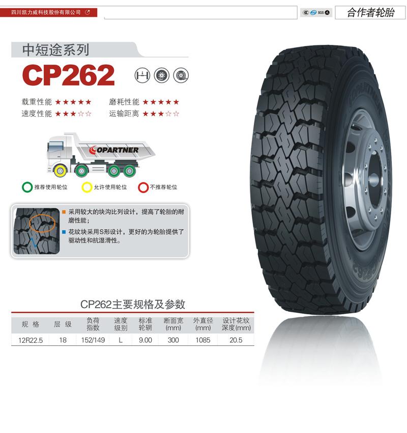 CP262.jpg