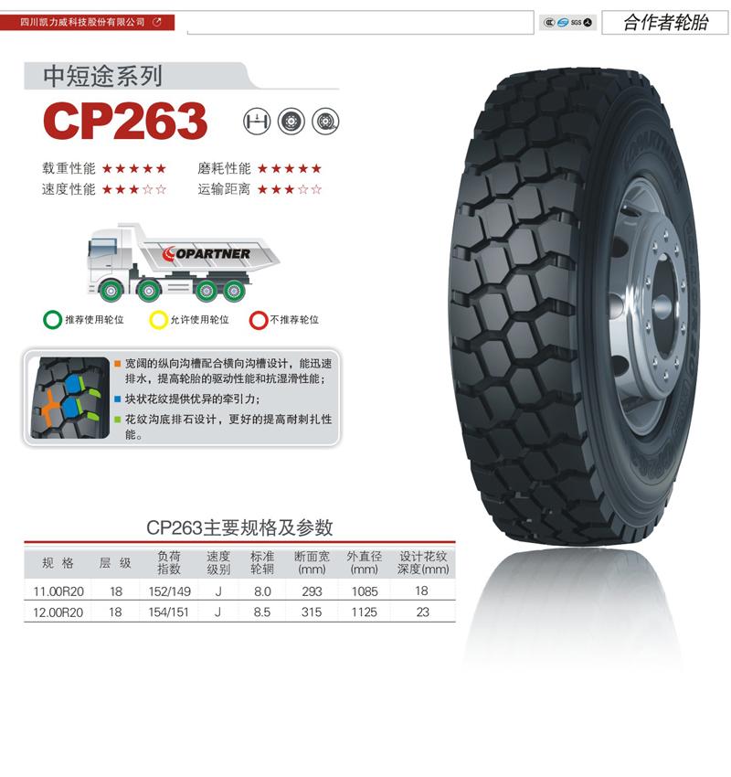 CP263.jpg